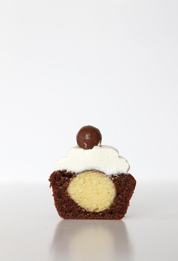 choc-van cupcakes 02 final